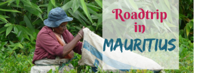 Mauritius – The fabulous Tea Route