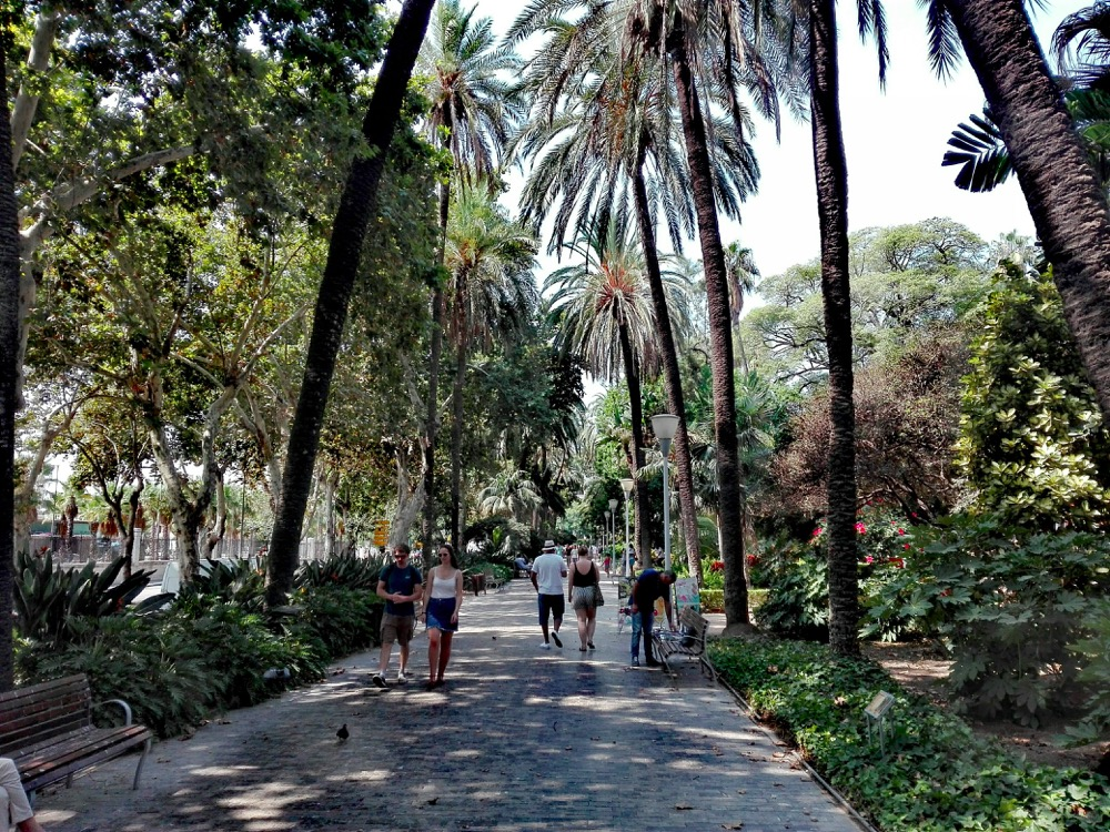 malaga park, park spain, malaga, Alameda parque, malaga parque