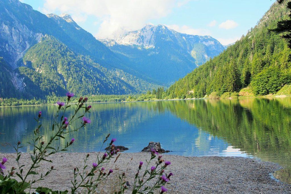 Slovenia, lake, nature, eastern europe