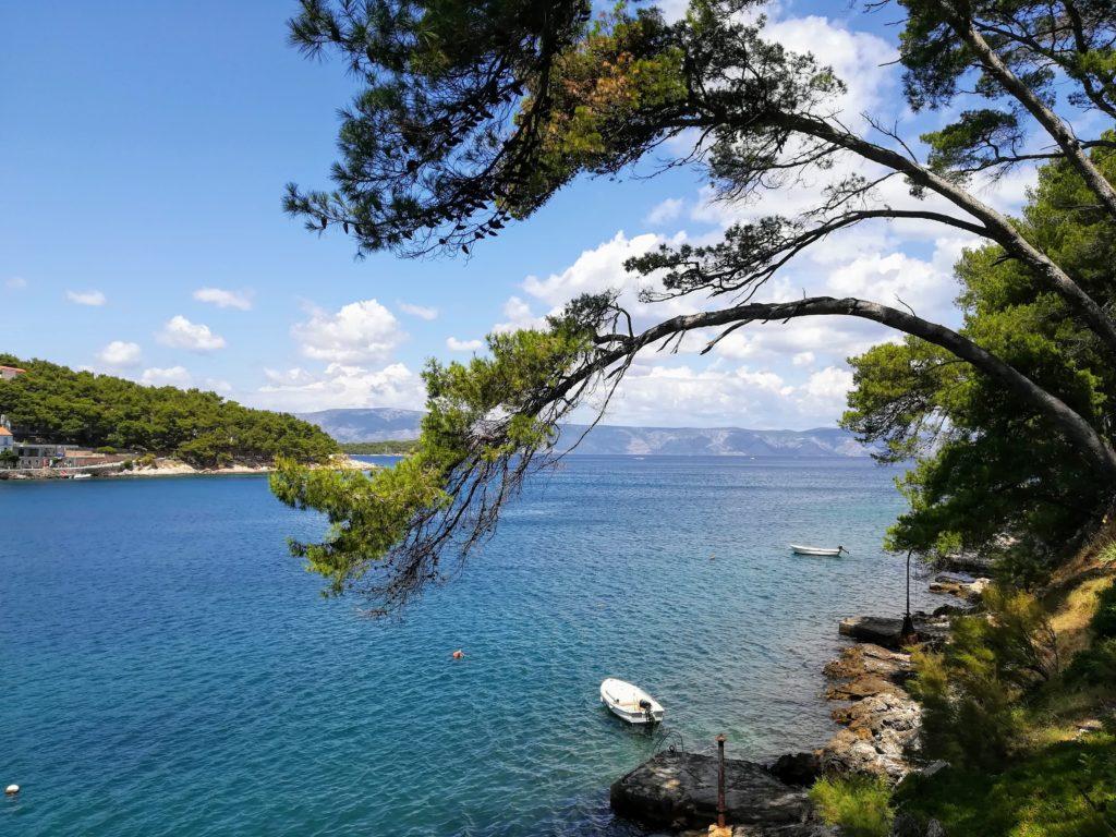 Bay, sea, skies, trees, small boat, Croatia, Hvar, swimming