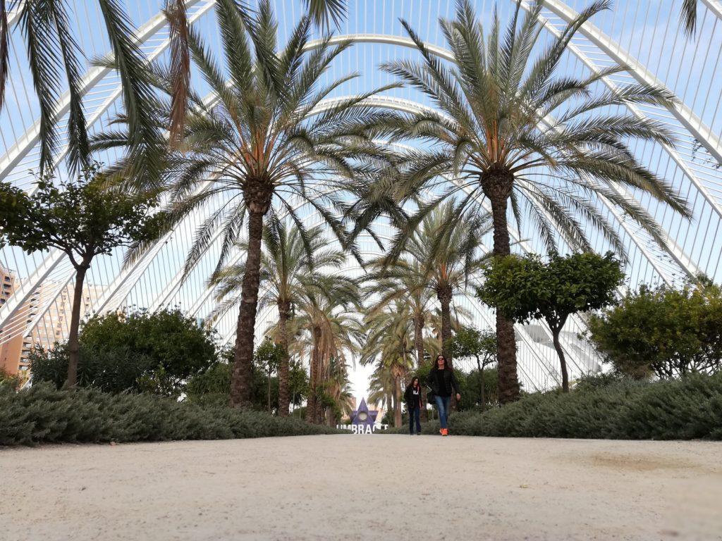 Calatrava, CAC, Ciudad de las artes y las ciencias, Valencia, Spain, Iberia, biking, L´Umbracle, open-air nightclub,