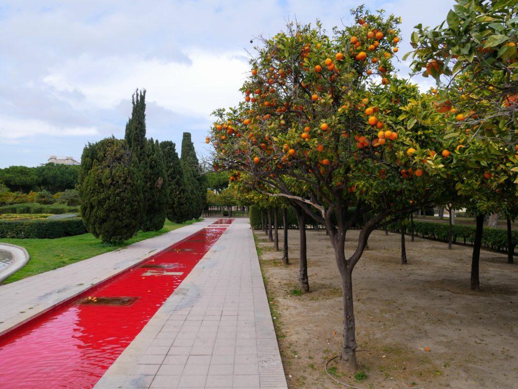 Turia gardens, valencia, Spain