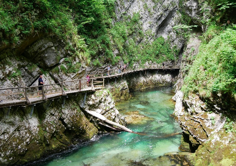 Wooden boardwalks, boardwalks, Vintgar Gorge Slovenia, Slovenia