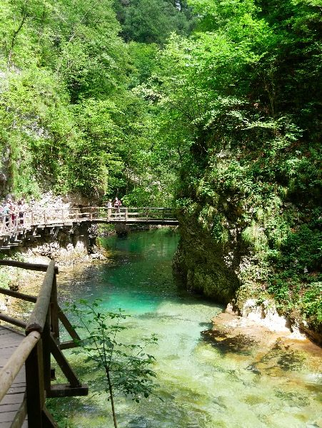 Vintgar Gorge Slovenia, boardwalks, Radovna River Slovenia