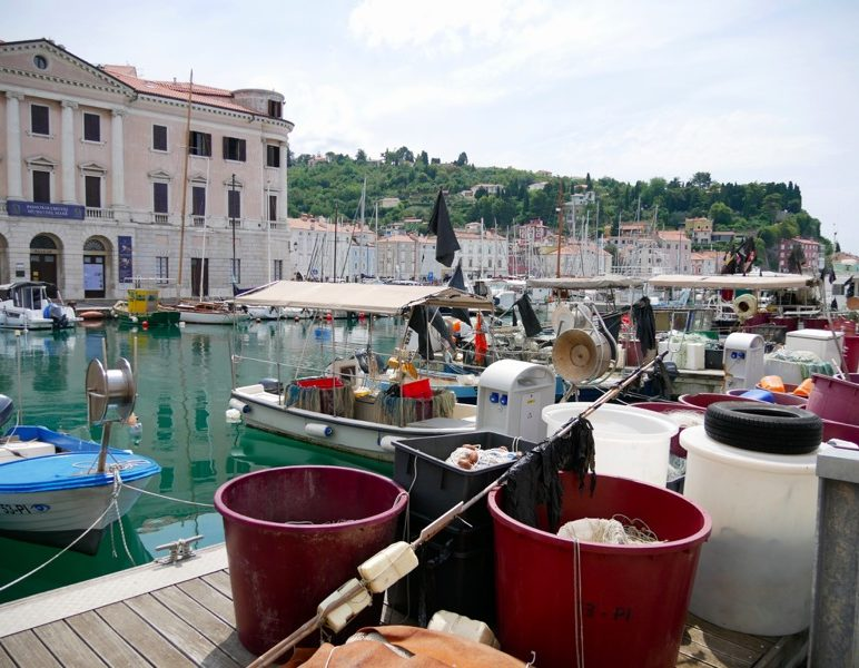 Piran harbour slovenia