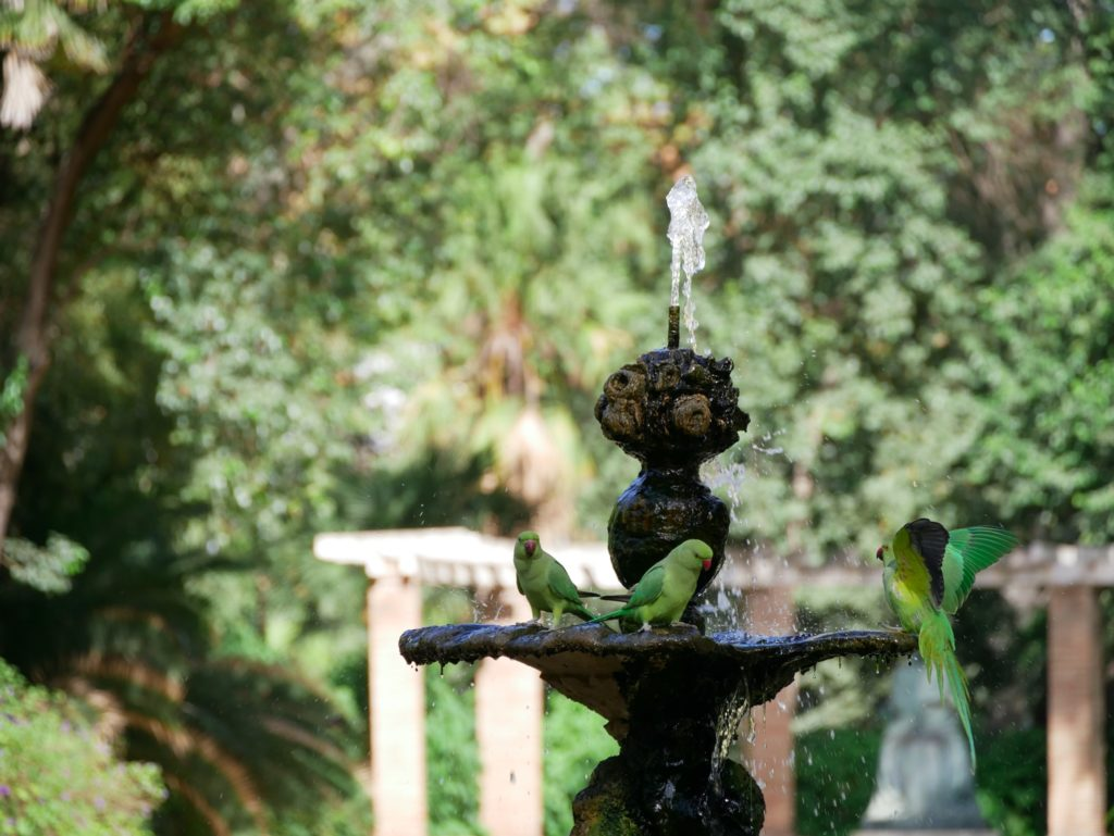 Parque de Maria Luisa, Seville